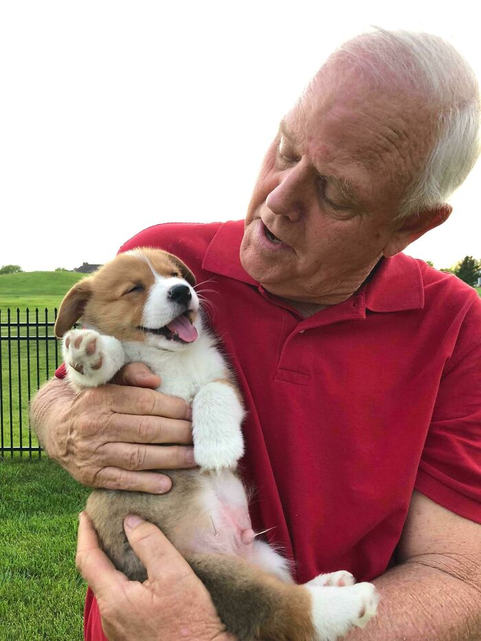 My Dad Meeting His First Granddogger