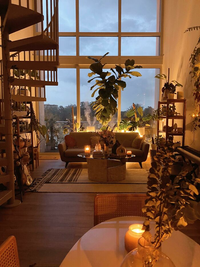 Cozy Sunday Evening With My Plants