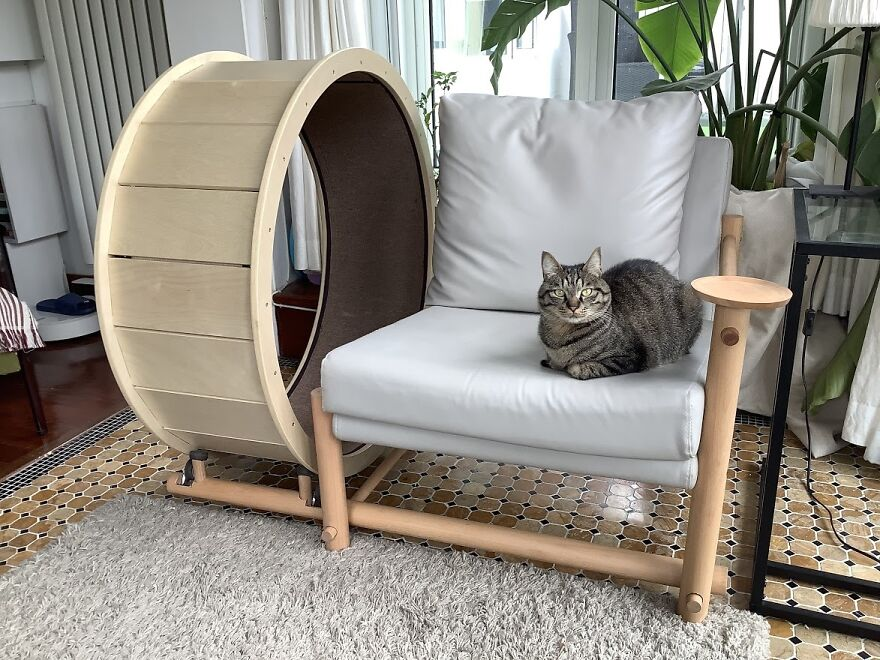 A Chair With An Integrated Running Wheel Was Invented For Cat Lovers