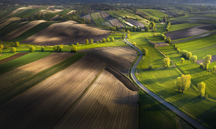 Fields Of Ponidzie