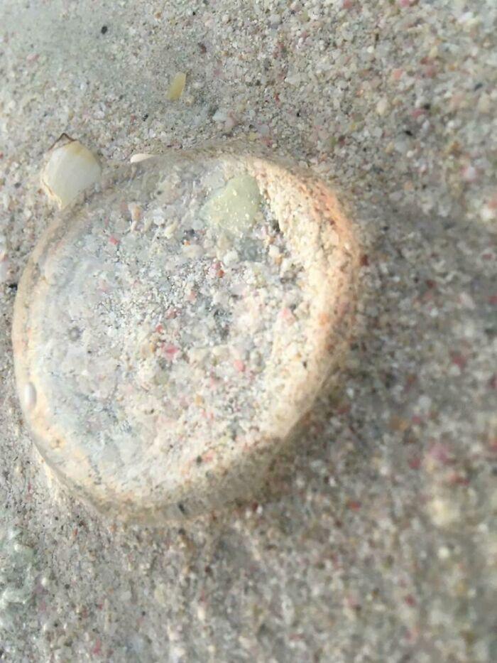 Sand Through A Jellyfish