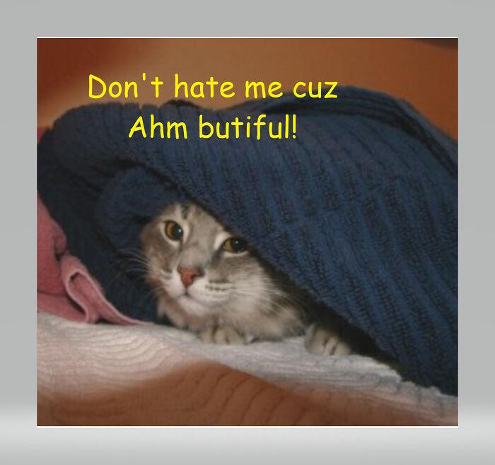 Ah Iz Butiful! Fatgirlrollin