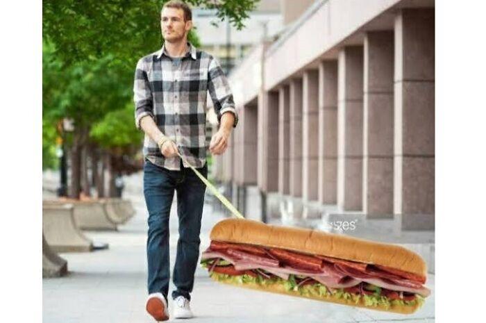 Man Walking His Sub