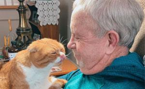 Este gato se niega a separarse de su abuelo, que lucha contra el cáncer