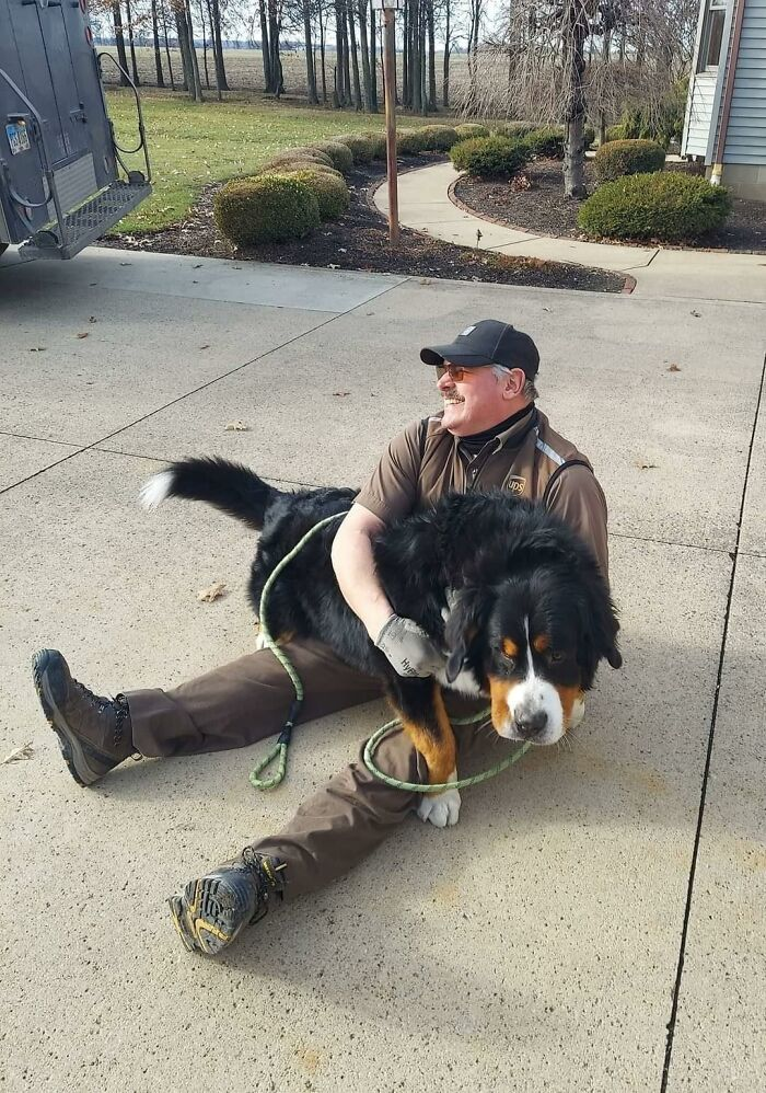 UPS-Delivery-Driver-Meets-Dogs