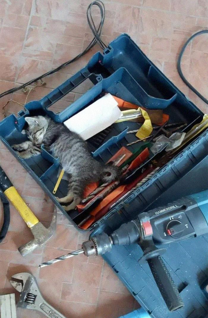Caught The Repair Man Sleeping On The Job