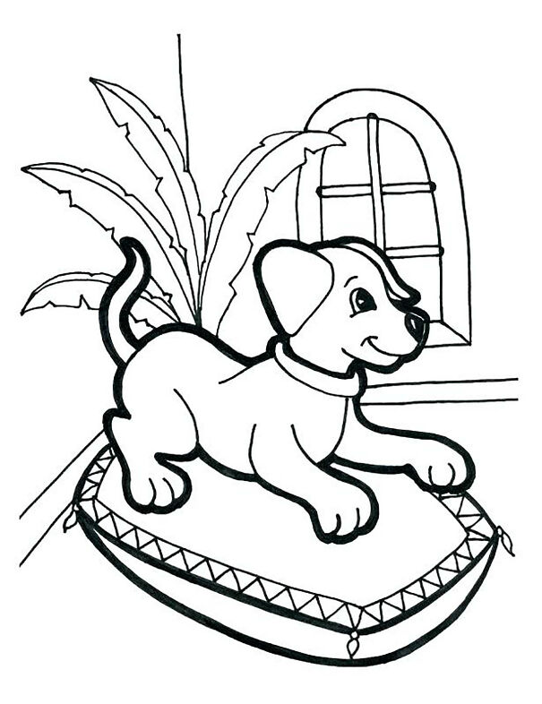 coloring-pages-for-children-dogs-72202-607b24f3658be.jpg