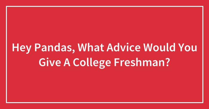 Hey Pandas, What Advice Would You Give A College Freshman? (Closed)