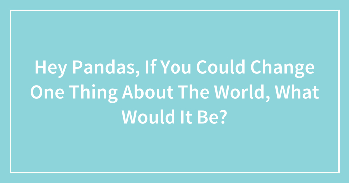 Hey Pandas, If You Could Change One Thing About The World, What Would It Be? (Closed)