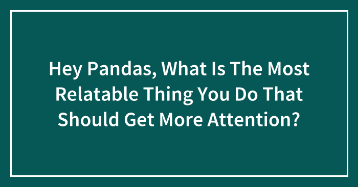 Hey Pandas, What Is The Most Relatable Thing You Do That Should Get More Attention? (Closed)