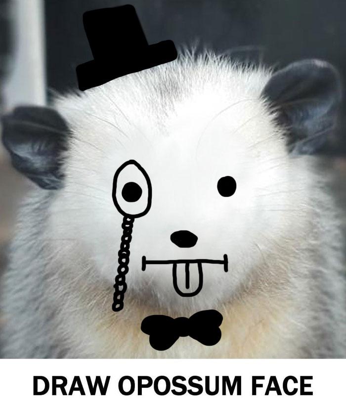 Fancy Fellow
