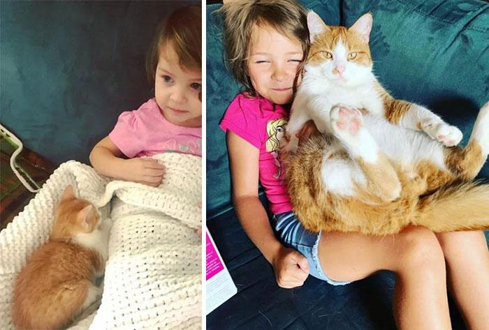 Kitten To Cat & Baby To Kid