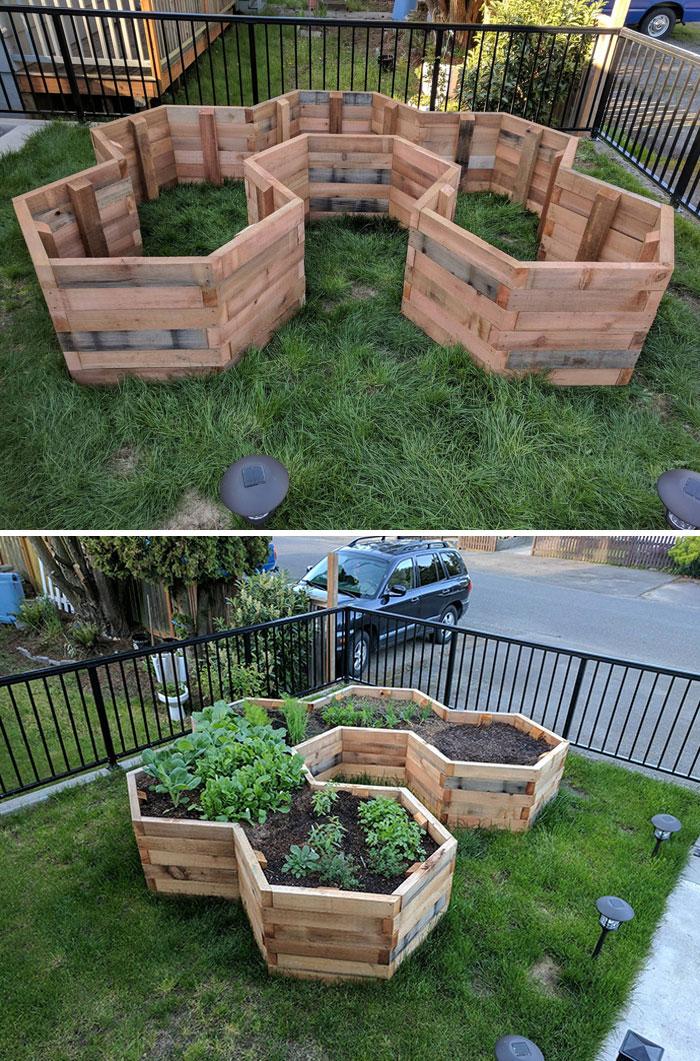 First Major Gardening Project - Hexagonal Garden Beds