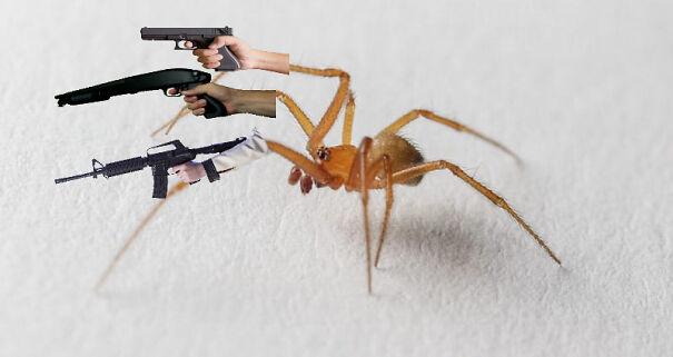 gun-spider-607117fee7a54-png.jpg