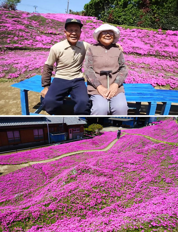 Husband Spends 2 Years Planting Thousands Of Scented Flowers For His Blind Wife To Smell And Get Her Out Of Depression
