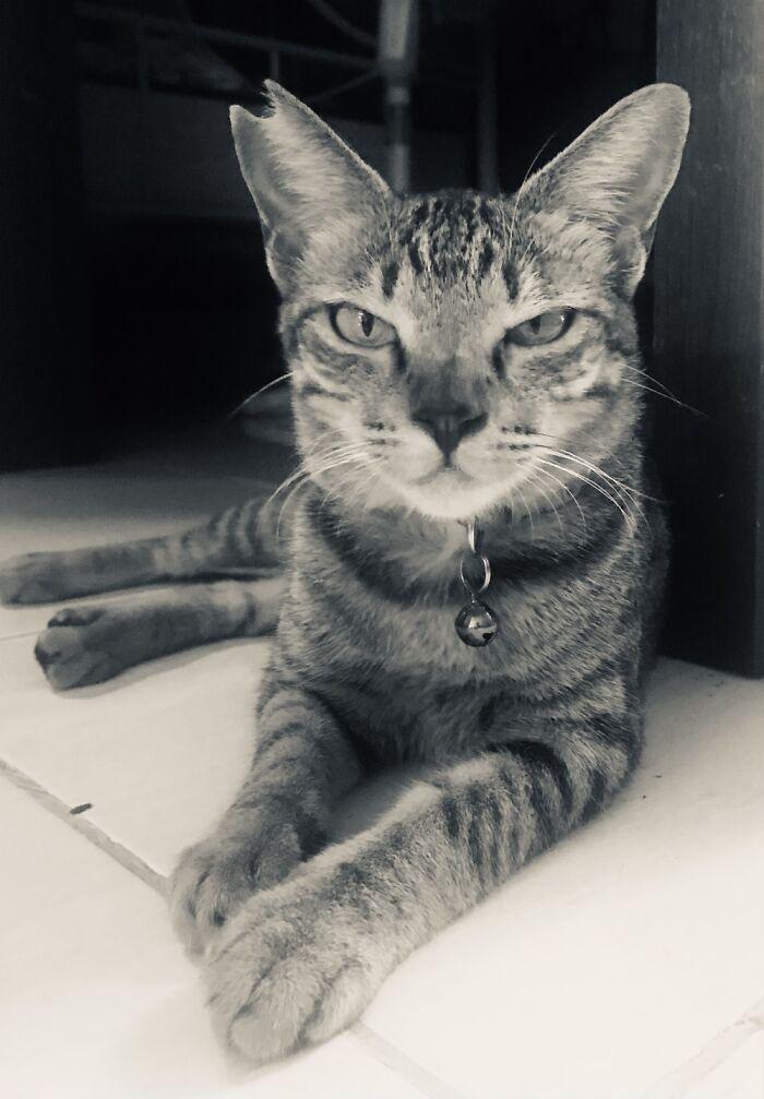 My Baby Gurl Marimar