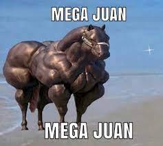 mega-juan-6088937823967.jpg