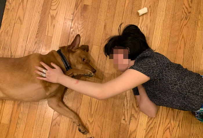 People-Choose-Pet-Over-Partner