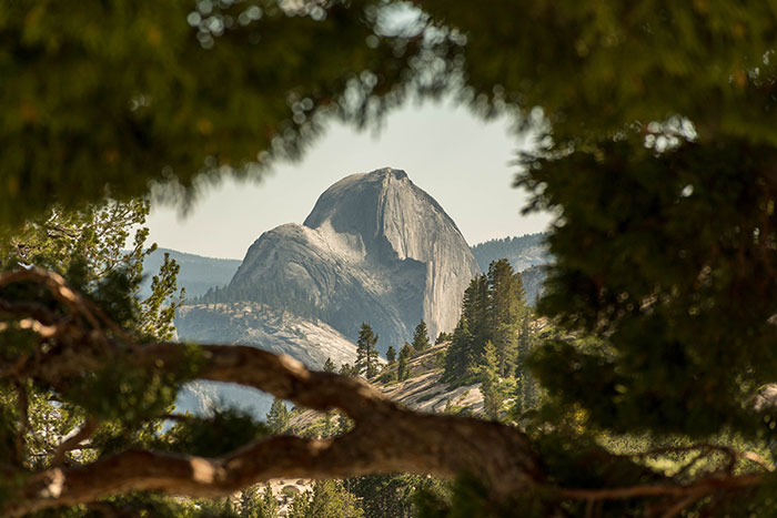 I've Been Told My Photo Of Half Dome Looks Like A Videogame Render