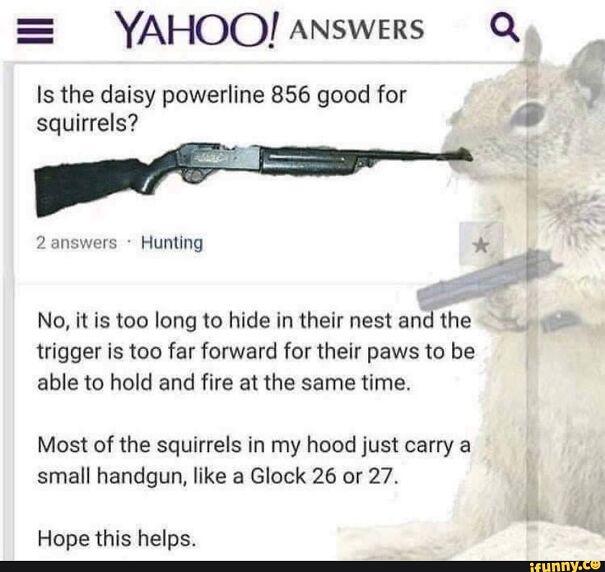squirrel-6070636c7b725.jpg