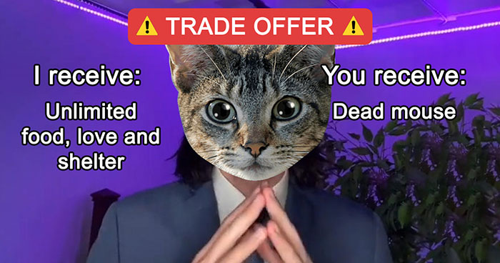 """People Online Are Cracking Up At These 40 """"Trade Offer"""" Memes"""