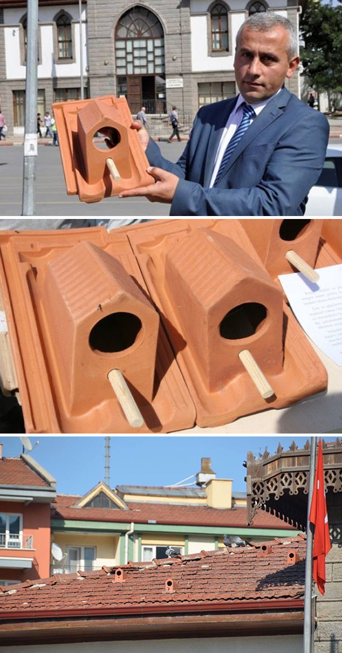 A Factory In Turkey Started To Produce Roof Tiles That Serve As Bird Shelters