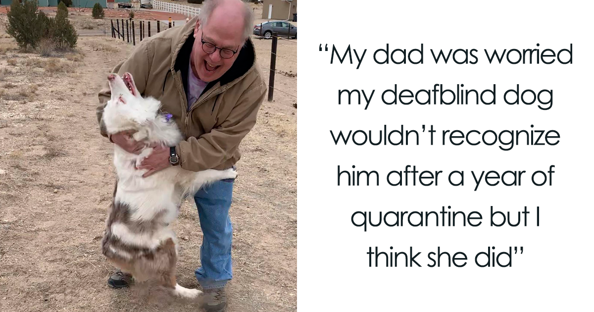 If You're Feeling Down, These 136 Wholesome Pics Might Lift You Up