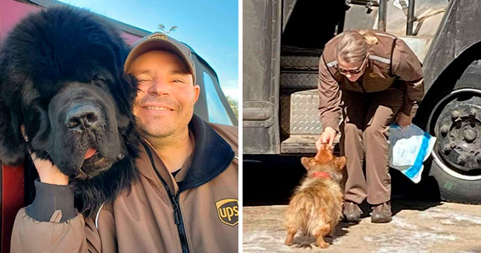 35 Times UPS Drivers Were Lucky To Meet Dogs On Their Routes And Shared The Pics On This Group (New Pics)
