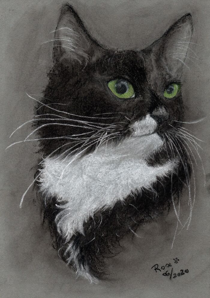 The Oldest Of My Furry Children, Charcoal