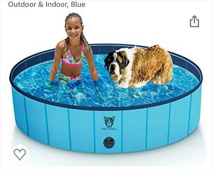 Can't Decide If This Pool Is For Giant Children Or Miniature St. Bernards