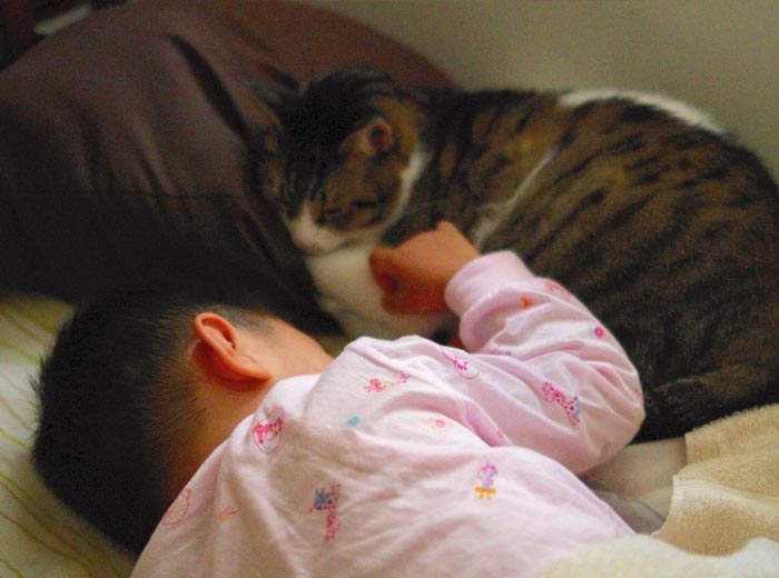 People-Share-Precious-Pet-Moments
