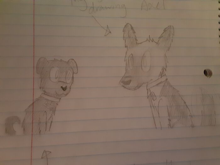 I Drew My Two Doggos In A Cartooney Style Because I Cant Draw Dogs Realistically.