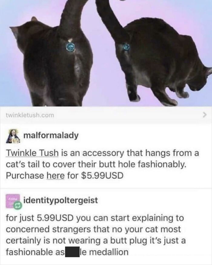 Because God Forbid Your Cat's Butthole Is Exposed!