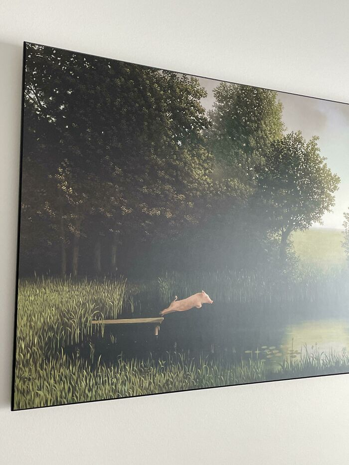 The Apartment That I Just Moved Into, Has A Picture Of A Pig Jumping Off A Dock