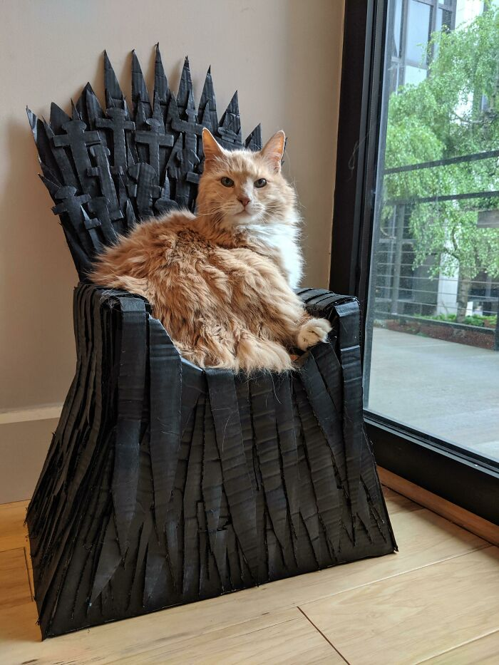 I Made My 17-Year-Old King Arthur A Cardboard Iron Throne