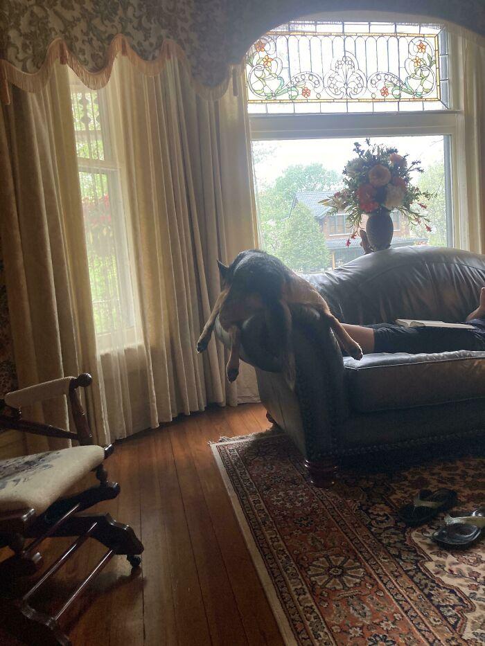 Cómo se sienta en sofá