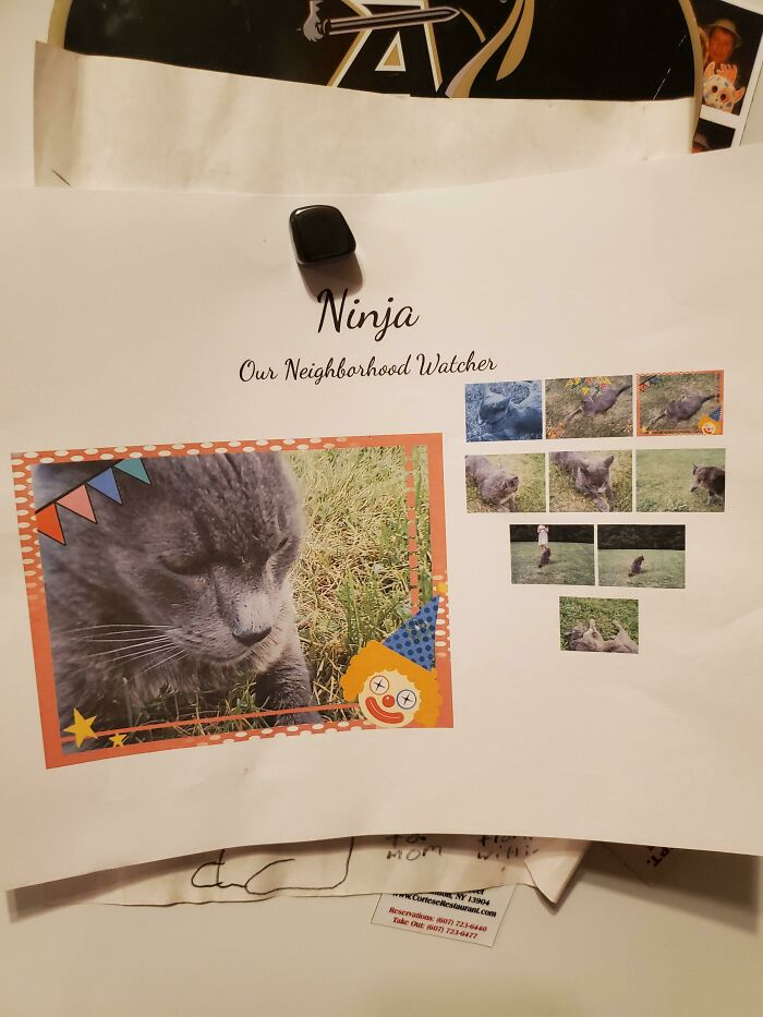 So My Cat Died A Few Days Ago And The Neighbors Kids Found Out And My This Collage Of Him. I'm In Tears