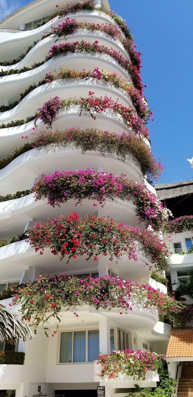 Balcones con buganvillas en Puerto Vallarta