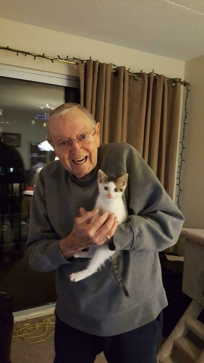 La gata de mi abuelo falleció a principios de diciembre. Estaba destrozado y no quería reemplazarla insensiblemente, pero se sentía tan solo