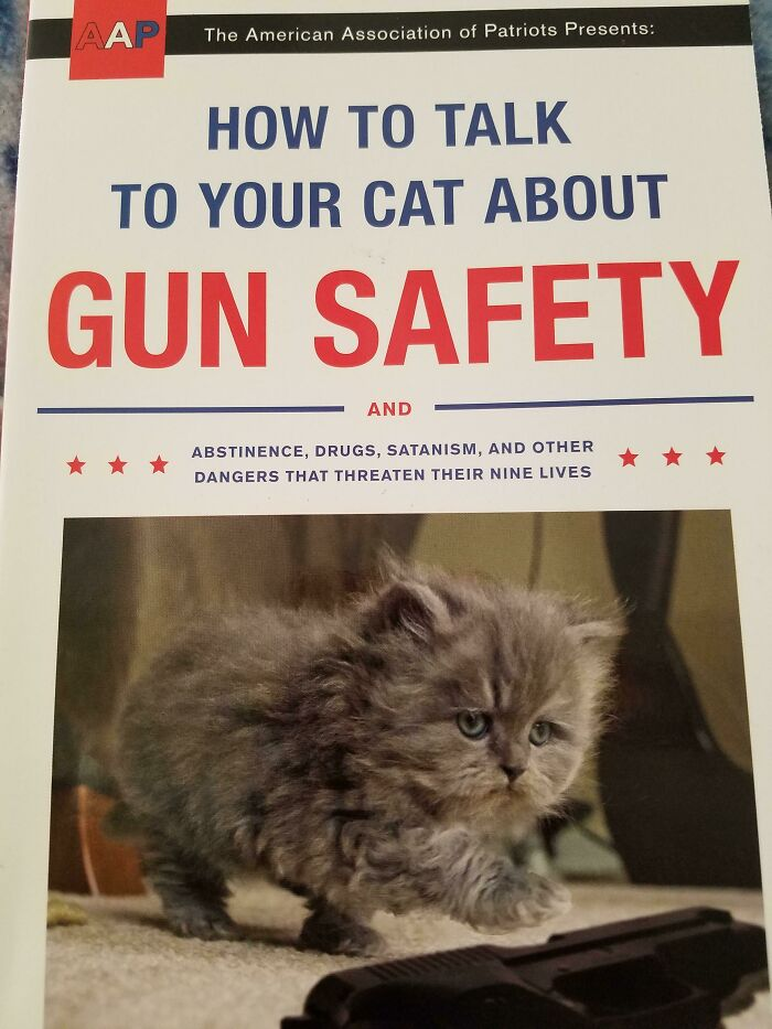 A Book To Help You Have Those Tough Talks With Your Cat
