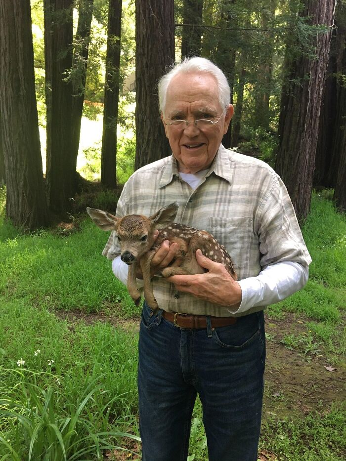 My Grandpa Rescued An Abandoned Baby Deer