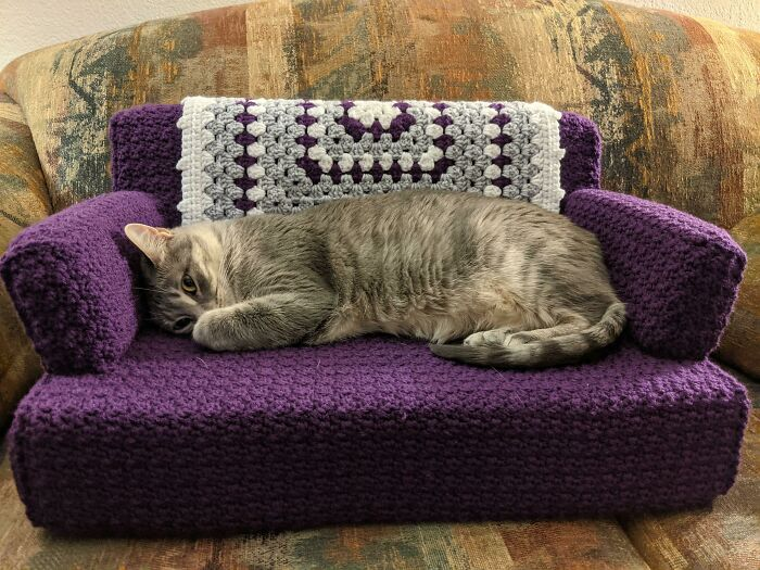 My Mom Crocheted A Couch For My Cats