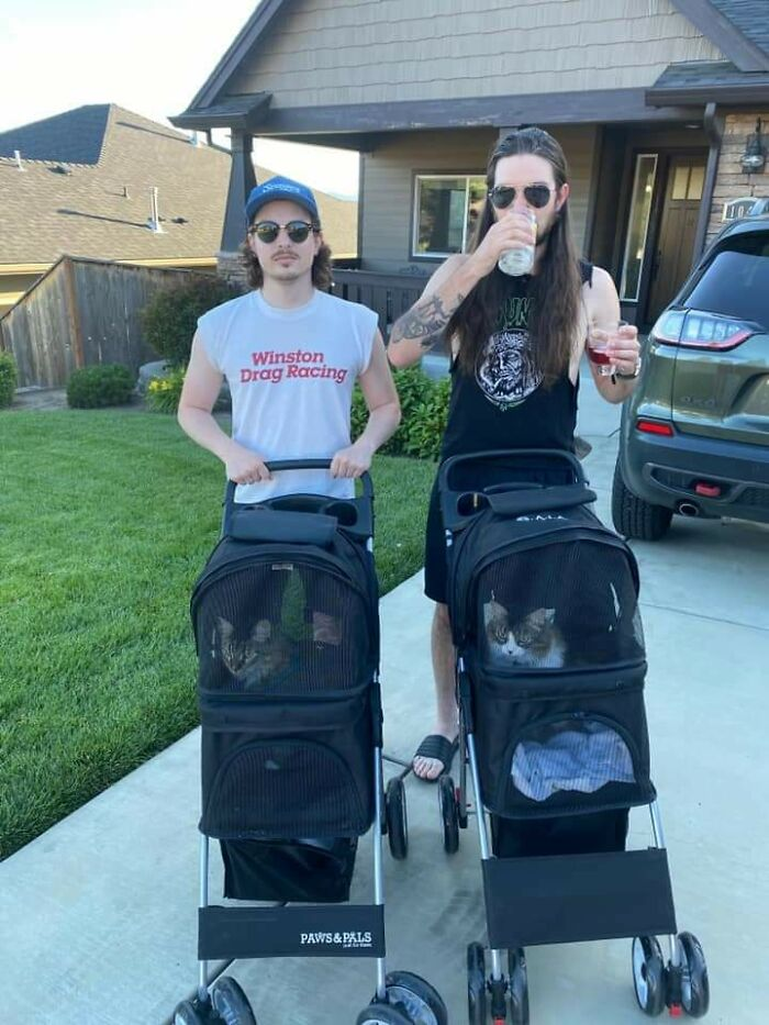 Just Two Guys Walking Their Cats In Strollers