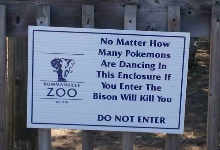The Bison *will* Kill You