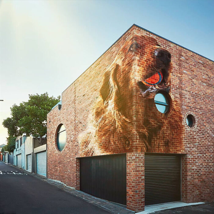 Been Learning Photoshop - Our Dog Photoshopped As A Street Mural