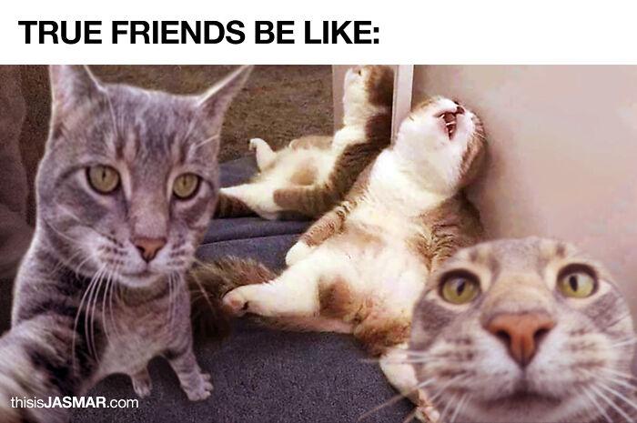 True Friends Be Like: