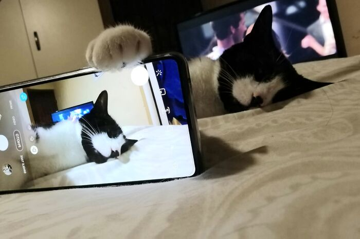 Selfie Mode Activated