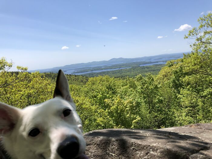 Hiking? Easy. Taking Selfies? Not So Much.