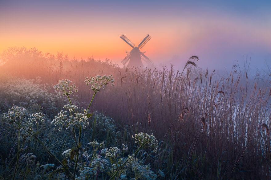 Fairy Mill