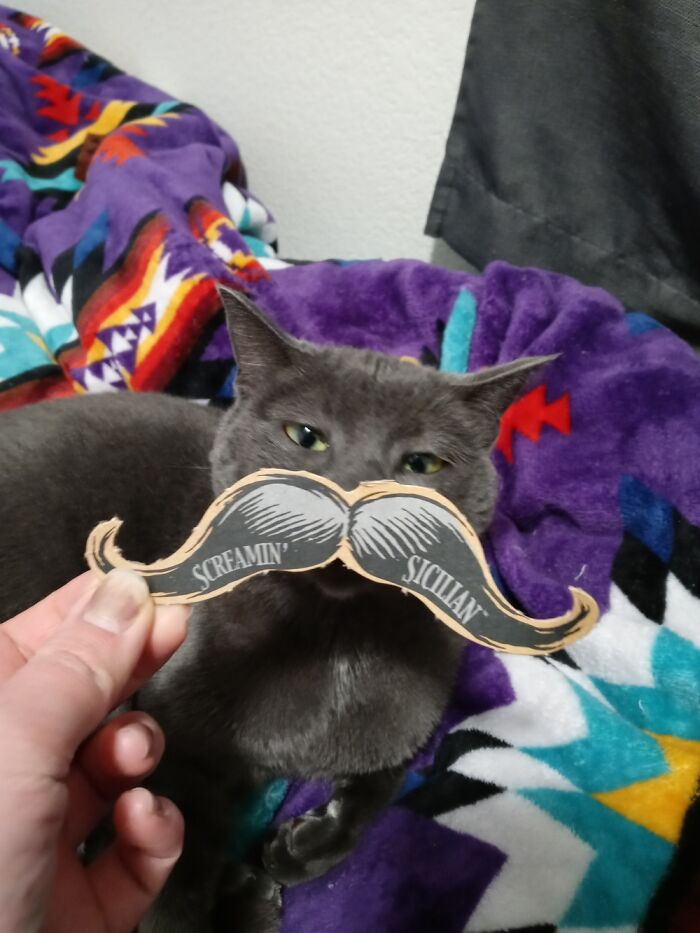 I Had To Hold The 'Stache For Her